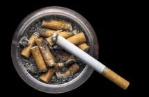 rauchen in den eigenen 4 wänden