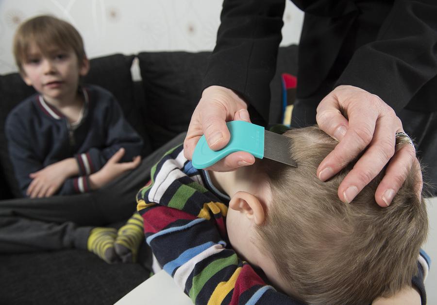 Kopfläuse bei Kinder