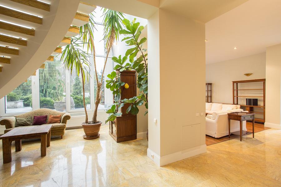 zuhause wohf hlen farben pflanzen. Black Bedroom Furniture Sets. Home Design Ideas